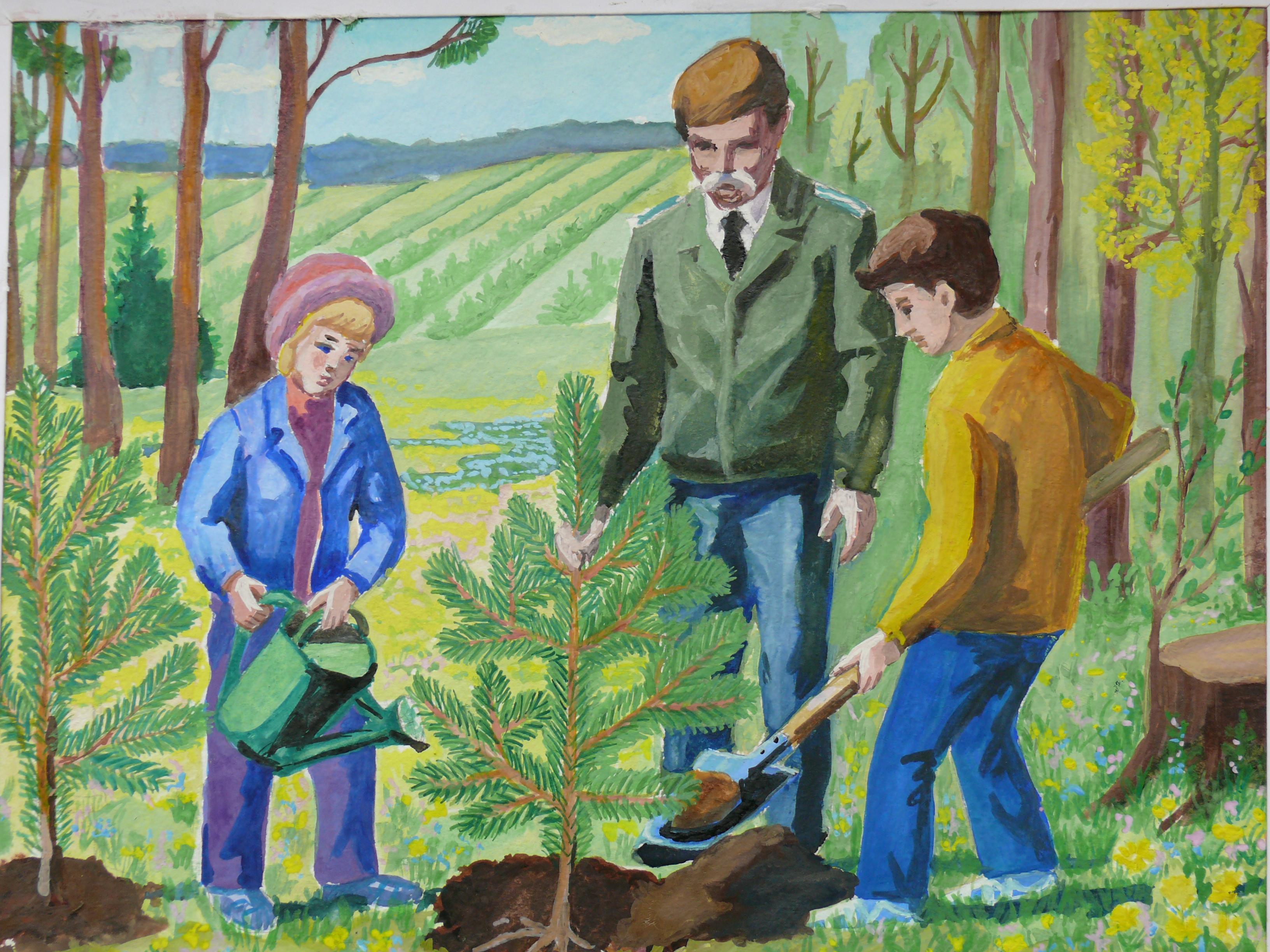 День леса картинки для детей